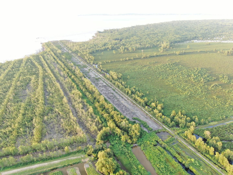 Algemene beschikking 219 - Vastgoed sector in Suriname